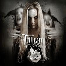 RockmusicRaider Review - Trillium - Alloy - Album Cover