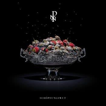 RockmusicRaider - Porta Nigra - Schöpfungswut - Album Cover